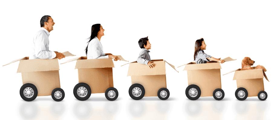 59e8754c18c4e75dc76f149d3d7fdaac Shipping & Delivery