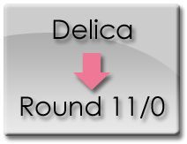 Delica Round conversion Miyuki 11/0 Delica-Round conversion chart